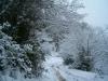 camino hacia Campa Gües