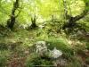 La Foix Cimera