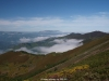 Desde la senda al fondo la Sierra del Aramo