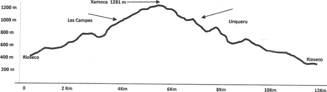 Perfil ruta 20150228