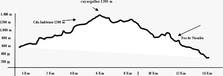 Perfil ruta 20150314